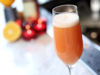 CAMPARI-mimosa-copyright-hans-just